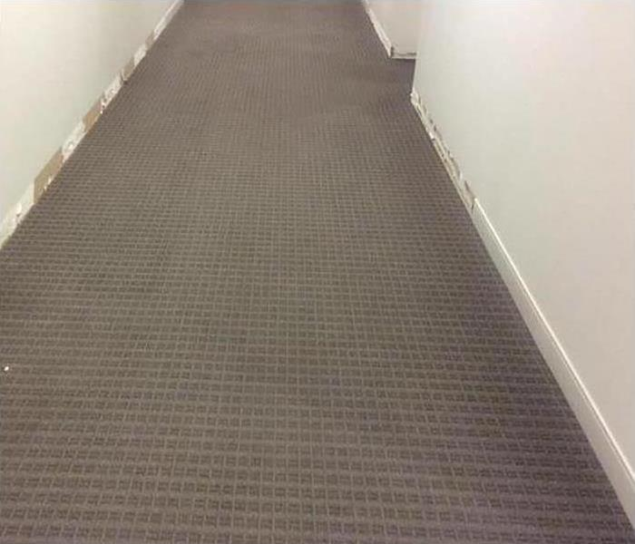 same office hallway with carpeting dried