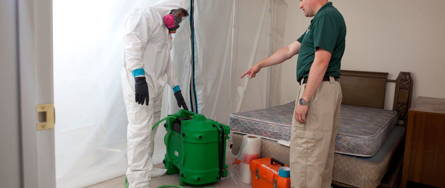 Pembroke Pines, FL mold removal process